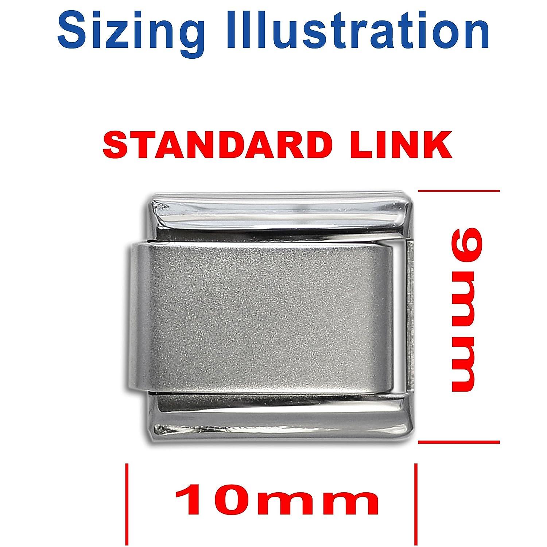 9mm Stainless Steel Interlocking Charm Links Dolceoro Satin Starter Italian Modular Charm Bracelet