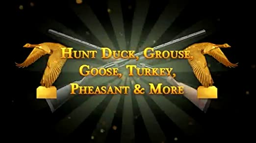 remington great american bird hunt free download