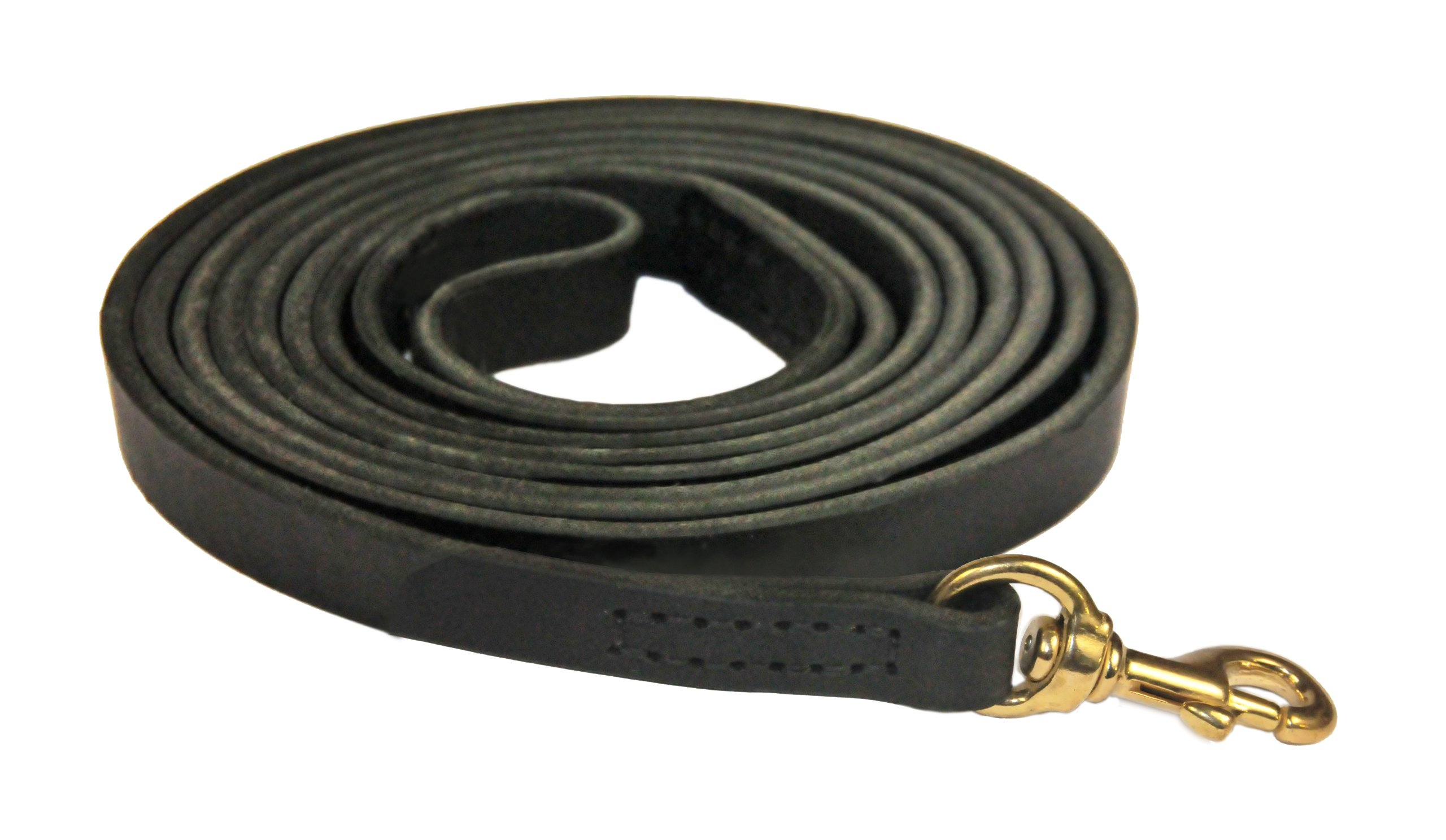 Dean and Tyler Stitched Track Dog Leash, Black 20-Feet by 1/2-Inch Width With Solid Brass Hardware.