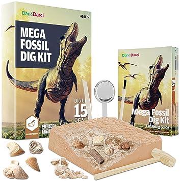 Mega Fossil Dig Kit - Dig Up 15 Real Fossils (Dinosaur Bones, Sharks, &  More) - Great Science, Archeology, Paleontology Gift for Boys and Girls -
