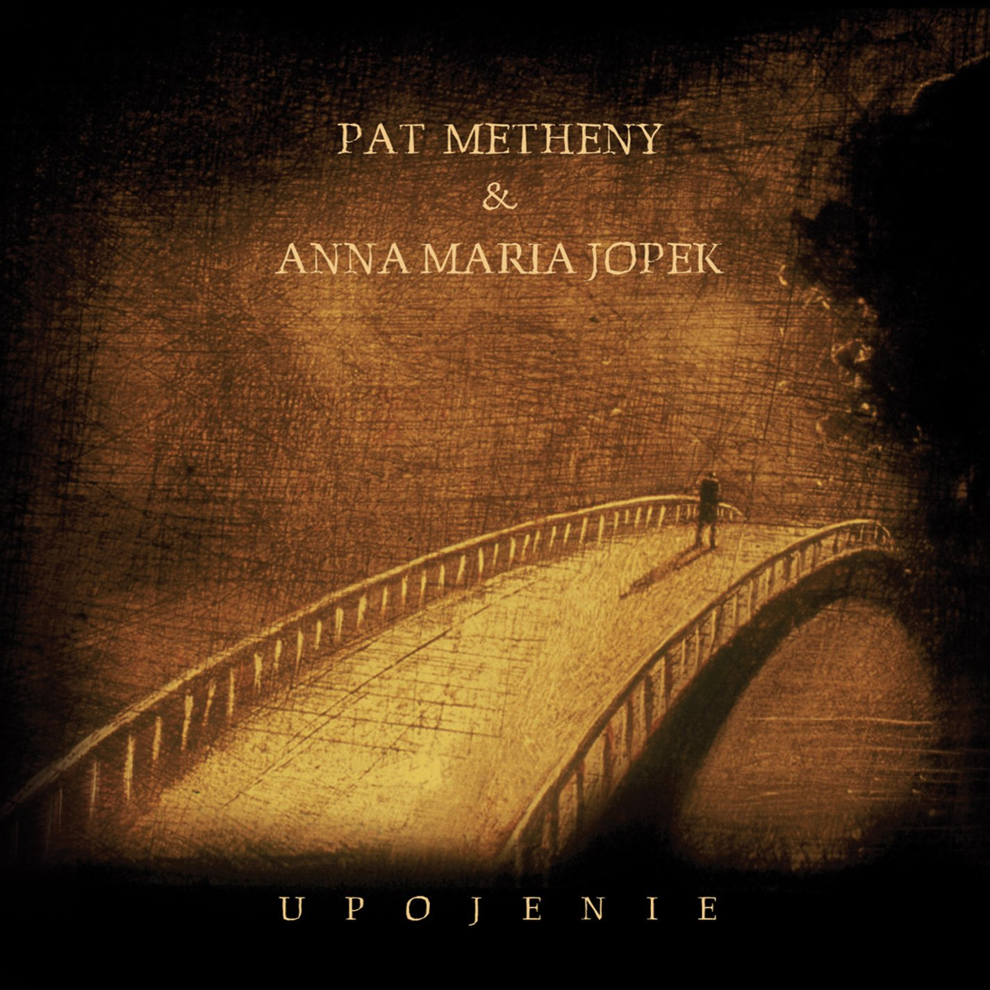 CD : Pat Metheny - Upojenie (CD)