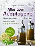 Alles über Adaptogene: Von Ashwagandha bis Rhodiola – Heilpflanzen, die den Organismus transformieren und heilen