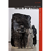 The Soul of the Stranger: Reading God and Torah from a Transgender Perspective (HBI Series on Jewish Women) book cover