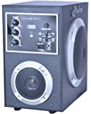 PALCO M1100 Bluetooth,AUX,FM,USB Multimedia Player