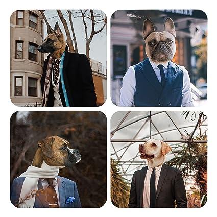 Amazon com | Drink Coasters Dapper Dogs Novelty Coaster Set Gifts