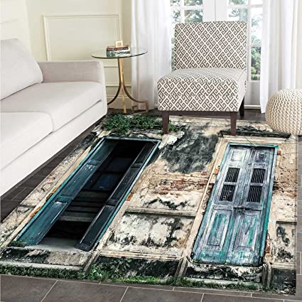 Amazon Com Rustic Area Silky Smooth Rugs Doors Of Old Rock House