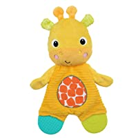 Bright Starts Snuggle & Teethe Plush Teether Toy - Giraffe, Ages Newborn +
