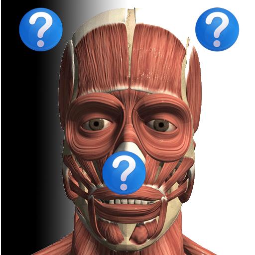 Anatomy Quiz Lite ()