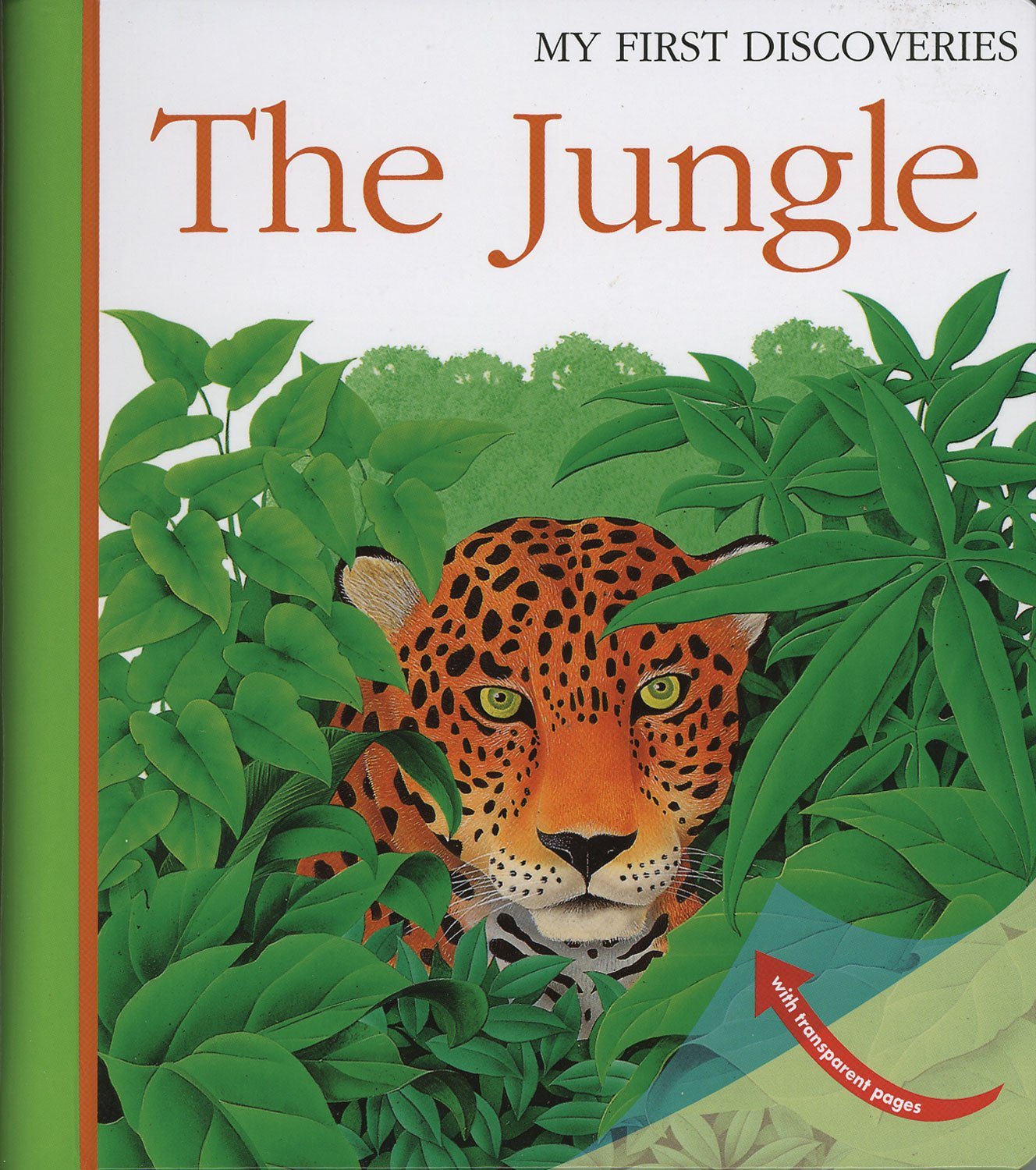 Download The Jungle (My First Discoveries) pdf epub
