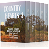 Country Hearts 3