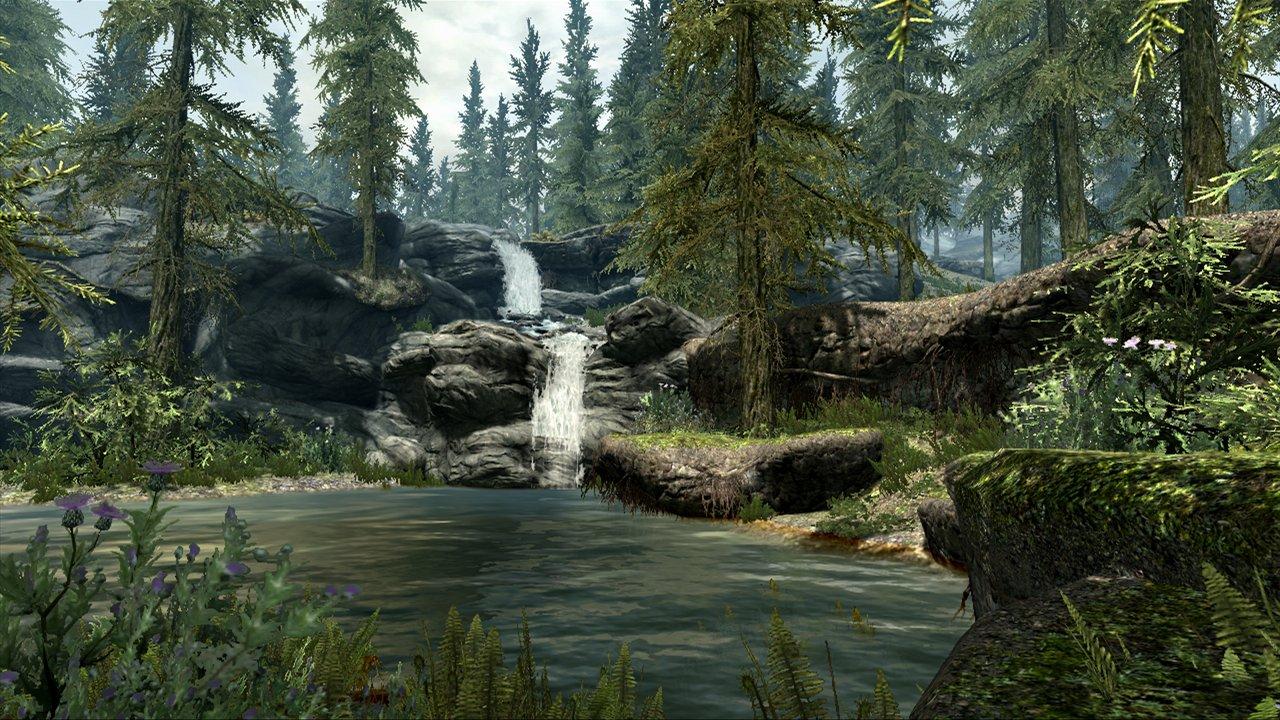 Buy Elder Scrolls V: Skyrim (PC) Online at Low Prices in
