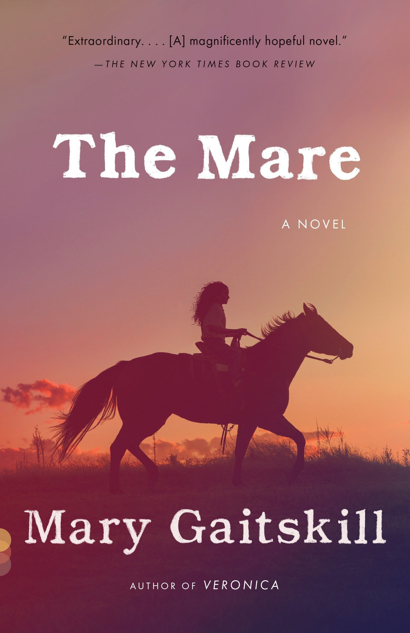Read Online The Mare: A Novel (Vintage Contemporaries) pdf