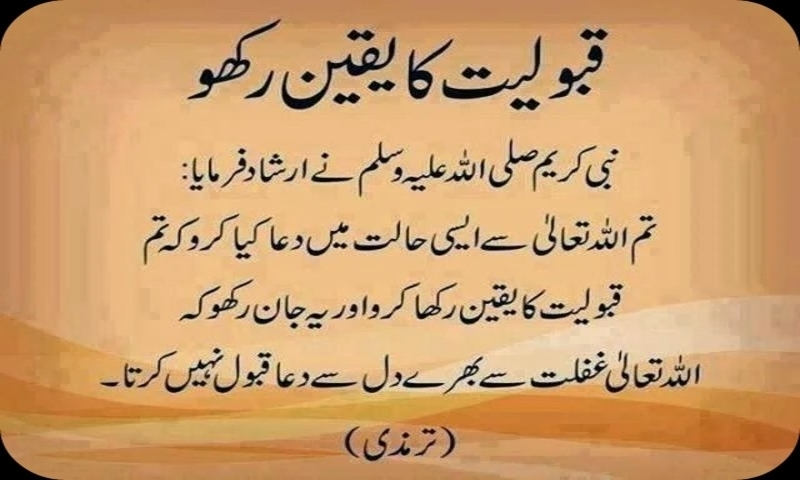Amazon com: 1000 Hadees: Appstore for Android