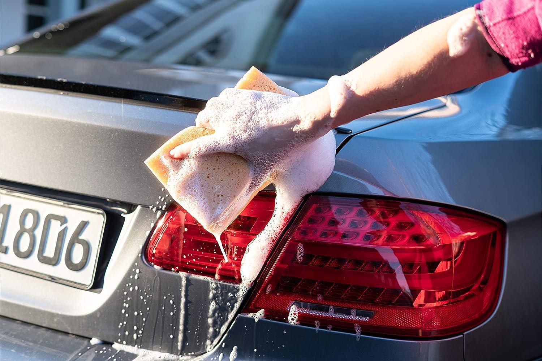 Esponja profesional para lavar coches Pintura suave y alta potencia de succi/ón en un juego de 2 18x12x6,5cm.