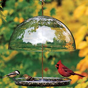 Droll Yankees Dorothy's Cardinal Bird Feeder