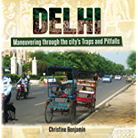 Delhi: Maneuvering Through the City's Traps and Pitfalls (English Edition)