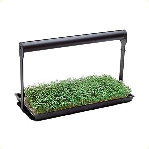 MicroFarm | Professional Microgreen Gardening Kit | Indoor Garden | Incl. Full Spectrum LED Grow Light and Growing Trays