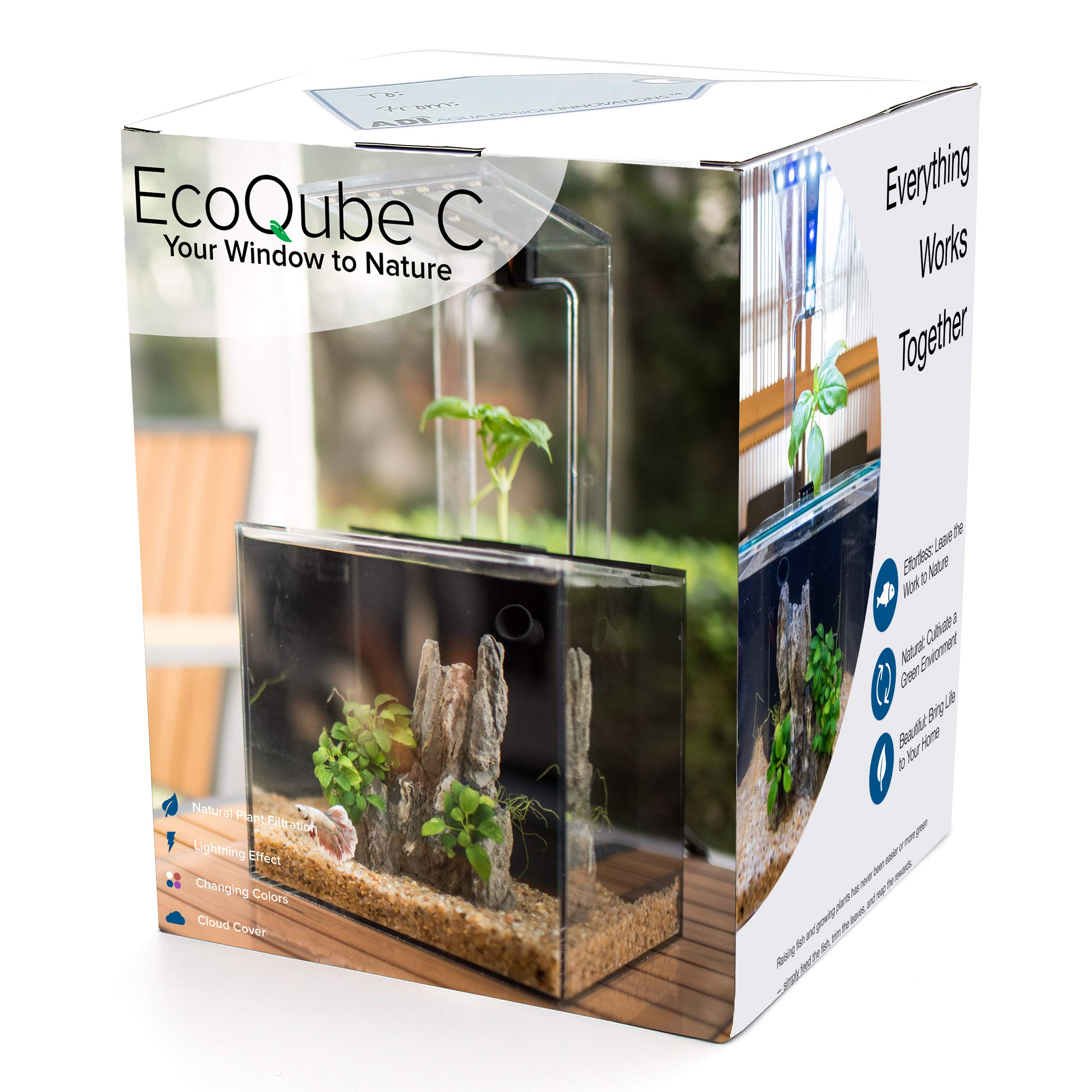 EcoQubeC Aquarium - Desktop Betta Fish Tank For Living Office And Home Décor by EcoQube
