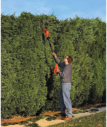 BLACK DECKER 20V MAX Cordless Hedge Trimmer, 18-Inch, Tool Only LPHT120B