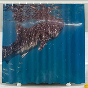 Shorping Kid Shower Curtain, Shower Curtain Set with Hooks,78x72inches Whale Shark Watching in Oslob Cebu fed with Krill Closeup Waterproof Decor Bathroom