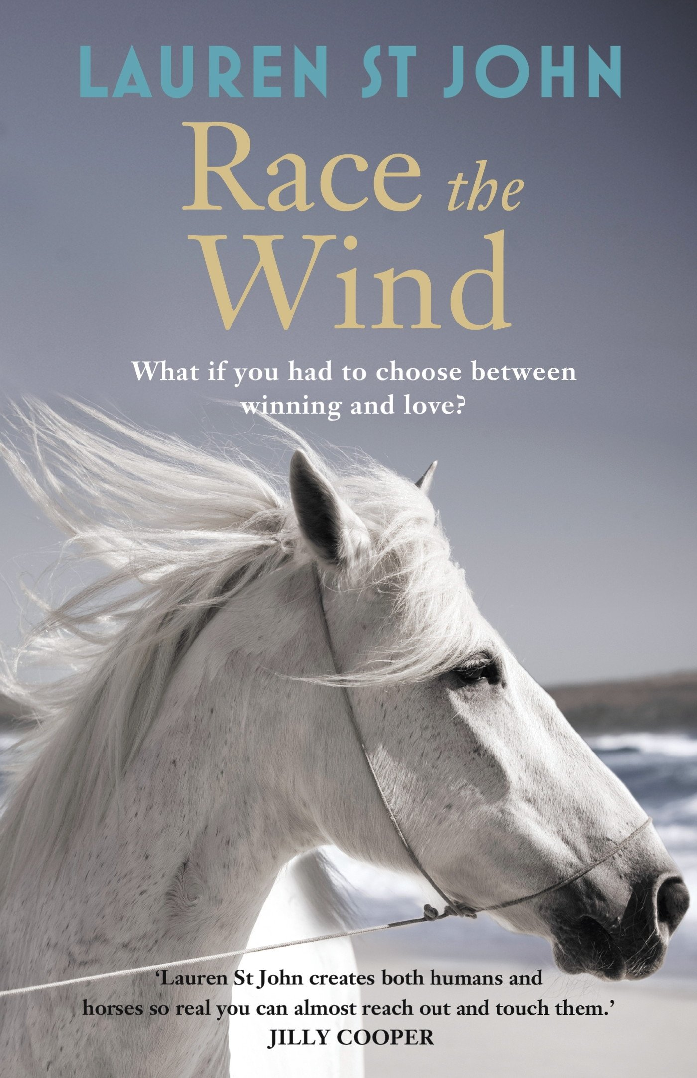 The One Dollar Horse: Race the Wind: Book 2 (English Edition)