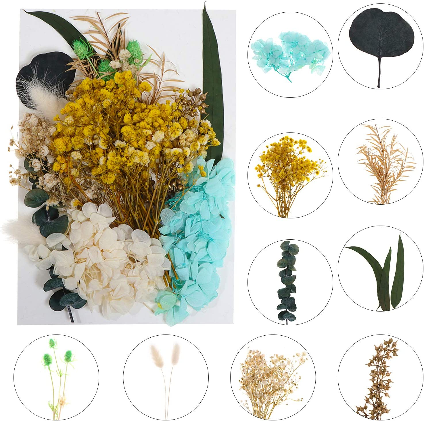 Ioffersuper 1Pack Real Dried Flowers Pressed Natural Plants Herbarium Mixed Dry Bouquets Leaves for Resin Craft Jewelry Gift Making Beauty Supplies Home DIY Painting Photo Album Decor
