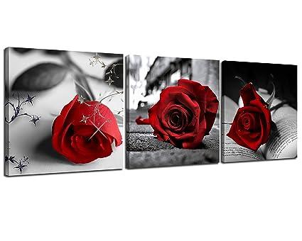 Amazon.com: NAN Wind Canvas Print 3 Pcs Black and White Red Rose ...