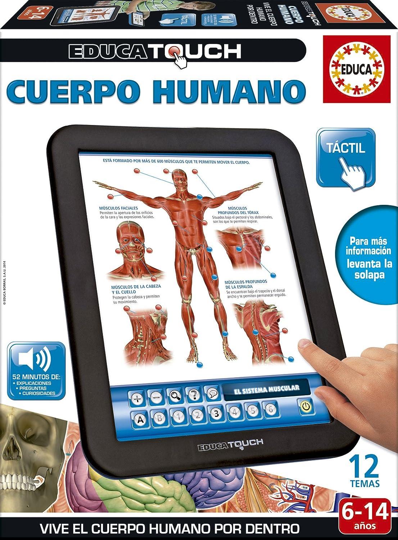 Amazon.es: Educa Touch - Cuerpo Humano, Juguete electrónico (16137)