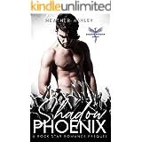 Shadow Phoenix: A Rock Star Romance Prequel