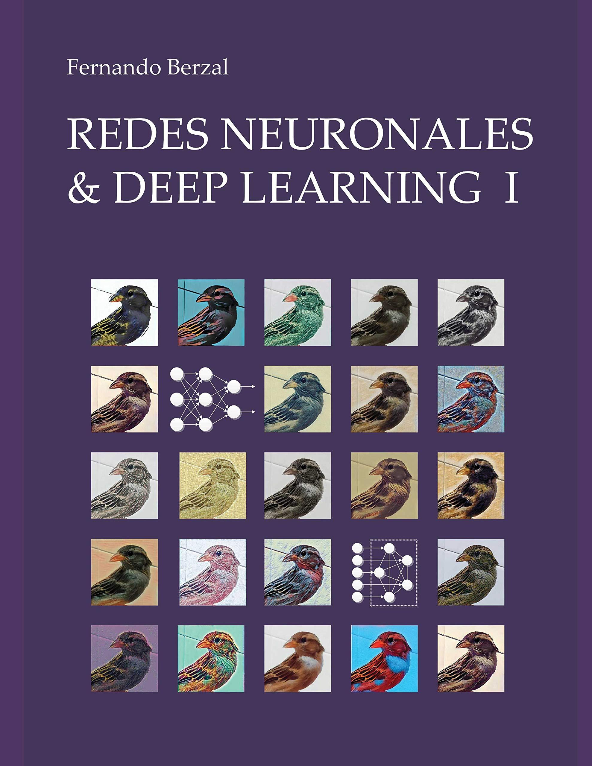 """Redes Neuronales & Deep Learning - Volumen 1: Entrenamiento de redes neuronales artificiales [formato 8.5"""" x 11""""]"""