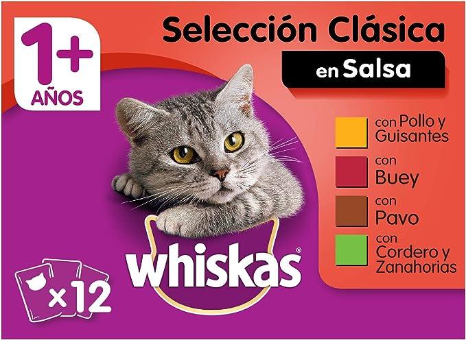 Whiskas Comida Húmeda para Gatos Selección Carnes en Gelatina, Multipack (4 cajas x 12 bolsitas x 100g)