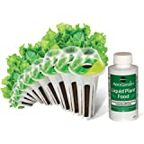 AeroGarden Salad Greens Mix Seed Pod Kit, 9 pod
