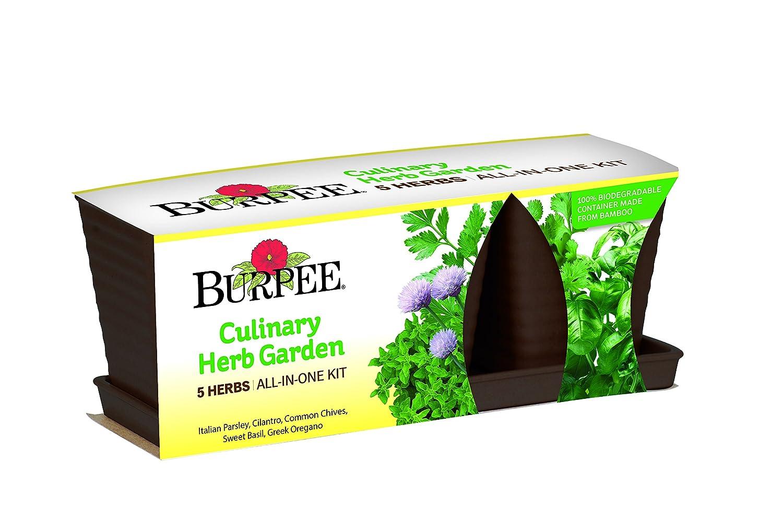 Amazon.com : Burpee 93220D Herb Kit One Culinary Garden : Garden U0026 Outdoor