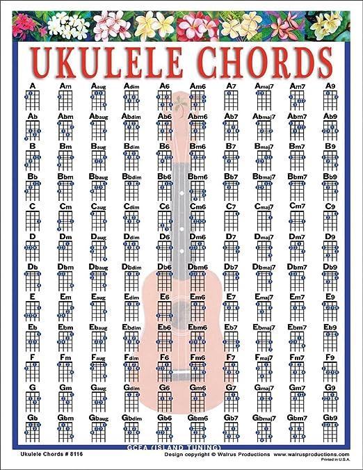 Amazon.com: Walrus Productions Ukulele Chord Mini Chart: Walrus ...