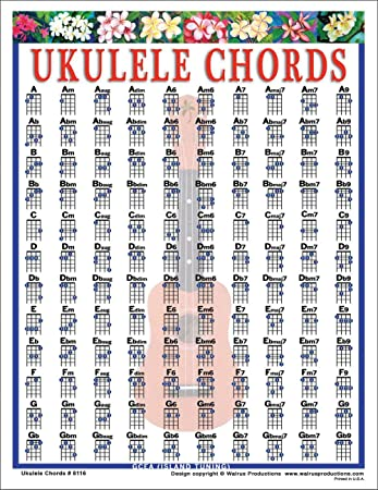Amazon Walrus Productions Ukulele Chord Mini Chart Walrus