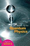 Quantum Physics: A Beginner's Guide (Beginner's Guides)