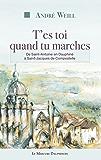 T'es toi quand tu marches: De Saint-Antoine en Dauphiné à Saint-Jacques de Compostelle
