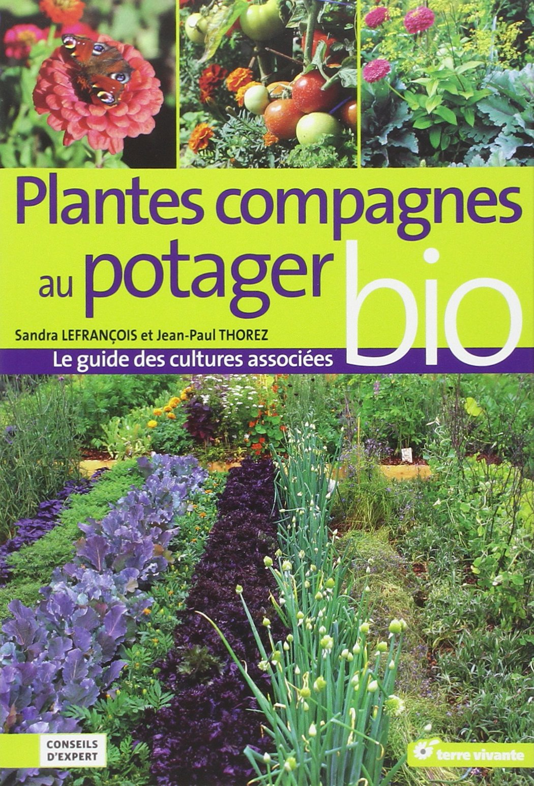 Association des lgumes au potager cheap culture association des lgumes bio parcelle n with for Potager bio