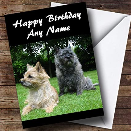 Pet Birthday Card from the Dog Personalised Anyname Happy Birthday to the