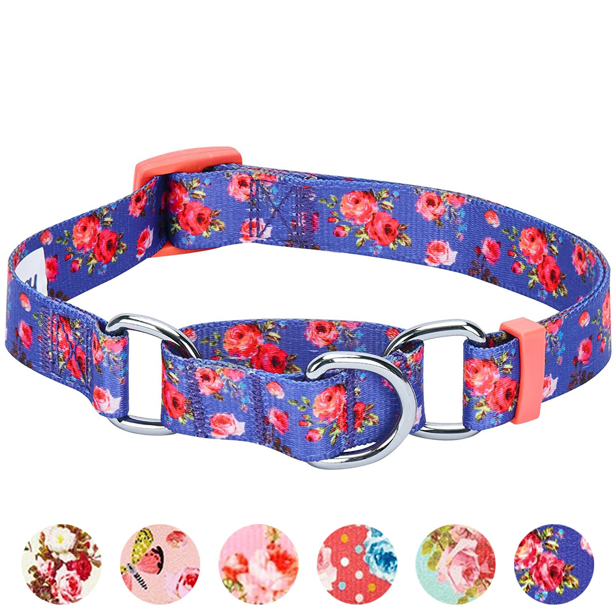 Blueberry Pet 6 Patterns Spring Scent Inspired Rose Print Safety Training Martingale Dog Collar, Irish Blue, X-Small, Heavy Duty Adjustable Collars for Dogs