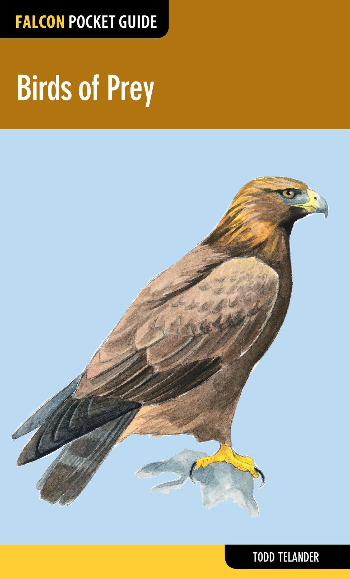 Read Online Birds of Prey (Falcon Pocket Guides) PDF