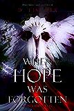 When Hope Was Forgotten: Grim Fairytales: An Angel Warrior Romance