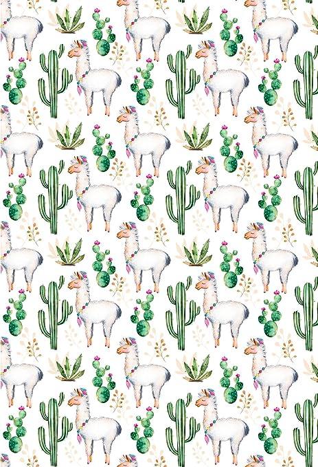 Muzi Photography Hintergrund Lama Kaktus Blumen Kamera