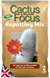 Growth Technology MDCAF2 Cactus Fokus Umtopfen Mix, 2 Liter