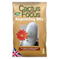 GREENLIGHT GUYS cactus focus repotting mix 2 litre bag …