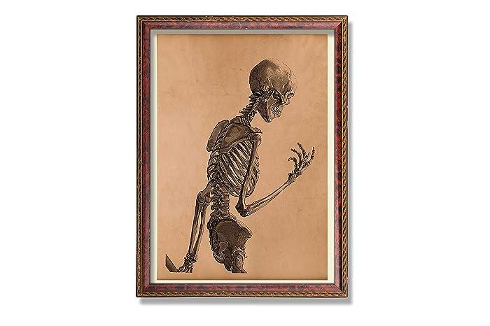 Amazon Skeleton Art Print Vintage Anatomy Poster Rustic Decor