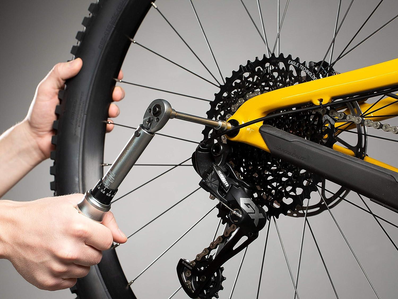 Steckschl/üsselsatz 1 bis 25 Nm Torx /& Innensechskant Inklusive 3min19sec Drehmomentschl/üssel Set 17-TLG f/ürs Fahrrad 1//4