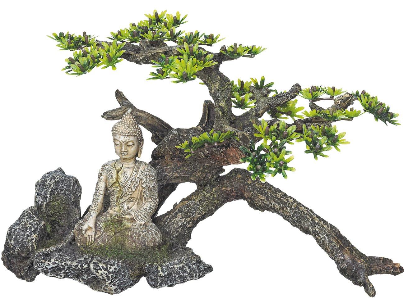 Nobby Buddha con pianta Acquario Decorativo, 32.5x 16.5x 21cm 28470