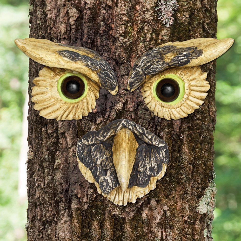 Amazon.com : Bits and Pieces - Owl Face Tree Hugger - Garden Peeker ...
