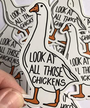 Look At All Those Chickens Funny Vine Vinyl Sticker, Laptop Decal, Cute Stickers, Funny Stickers, Vinyl Stickers by Diddly Daddle Doodles